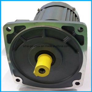 G3 Helical Gearmotor with IEC Flange pictures & photos