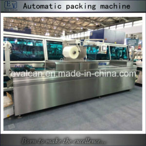 Ready Meal Vacuum Sealing Packaging Machine pictures & photos