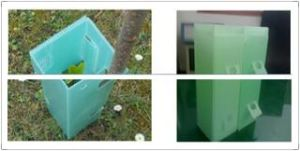 Light Green Plastic Tree Cube, Tree Guard Sleeves, Sureflute Rigid Guards pictures & photos