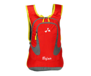 Hiking and Ski Small Hydration Water Travel Backpack for Women (BH-NH-16022) pictures & photos