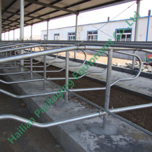 Livestock Farm Equipment Hot Galvanized Cattle Stall pictures & photos