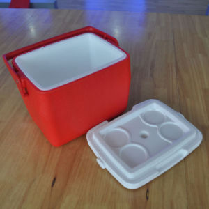 8L Ice Cooler Box for Outdoor Fishing with Handle (HWC-W8)