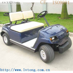 Cheap 2 Passengers Electric Buggy pictures & photos