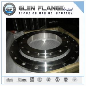Flat Flange Stainless Steel Forging