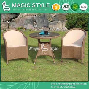 New Design Wicker Chair Sling Chair Textile Chair Rattan Chair Dining Chair Outdoor Furniture Patio Furniture Garden Furniture Modern Furniture Leisure Chair pictures & photos