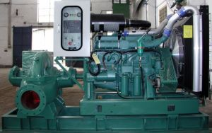 Wandi Brand, Chinese Most Famous Diesel Pump Set 300kVA-1250kVA pictures & photos