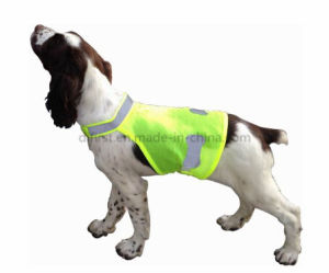 High Visibility Pet Vest for Pet Safety Warning pictures & photos