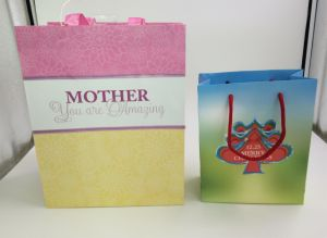Christmas Promotional Gift Paper Bags for Packaging
