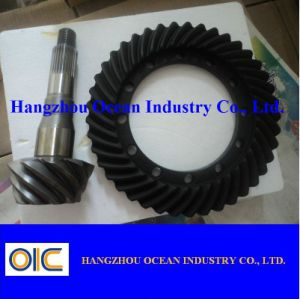 11X43 Crown Wheel and Pinion for Dana pictures & photos