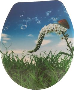 Beautiful Spring Urea Toilet Seat