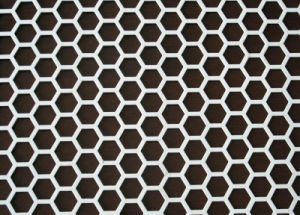 Ss Perforated Mesh Sheet Facroty Supply with Low Price pictures & photos