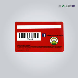 Plastic Magnetic Stripe Cards/Full Color Offset Printing Plastic Card pictures & photos