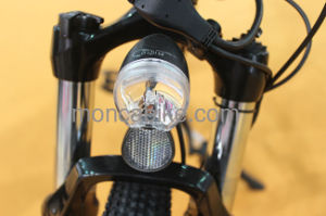 Low Noise Brushless Motor 8fun 36V Gray Blue White Electric Bike City E Bicycle Lady Scooter pictures & photos
