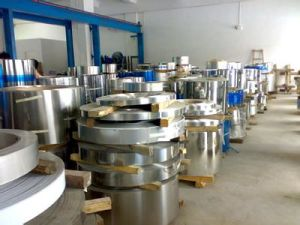 Stainless Steel Coil with Best Prices pictures & photos