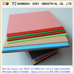 Colorful Hollow PP Sheet Plastic Sheets /Board pictures & photos