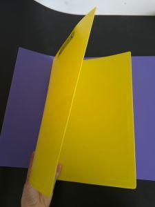 custom printing plastic file folder (PVC bag) pictures & photos