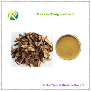 Hot Sale 100% Natural Cassia Twig Extract Powder pictures & photos