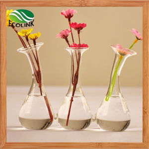 Water Plant Glass Vase Conjoined Flower Vase pictures & photos