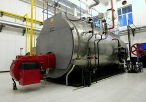 Wns Series Natural Gas Fired Hot Water Boiler pictures & photos