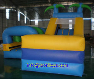Customized Inflatable Bounce House for Party and Events (A016) pictures & photos