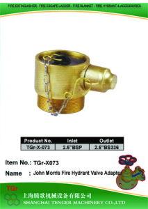 "BS336 Hydrant Valve: 2-1/2""Bsp==2-1/2"" BS336 (John Morris) pictures & photos"