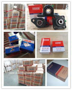 Hhb, Fe, Fkd Brand Flange Bearings pictures & photos