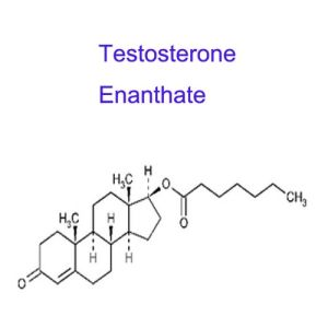 315-37-7 Raw Materials Steroid Powder Testosterone Enanthate for Bodybuilding pictures & photos