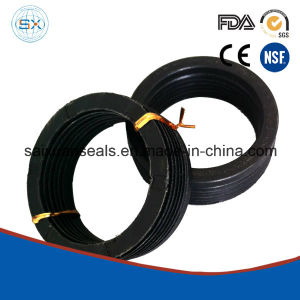 Fiber Reinforce V-Ring Chevron Rod Rubber Seal pictures & photos