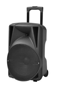 12 15 Inch 2 Microphone Bluetooth USB Trolly Speaker pictures & photos