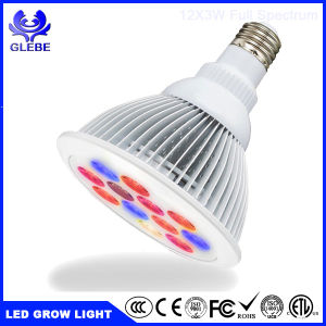Best Value LED Grow Light 36W LED Plant Bulb pictures & photos