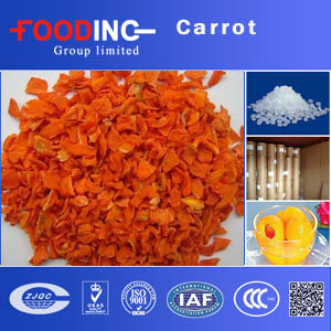 High Quality Dried Processed Dehydrated Carrots Dices Slices Chips Manufacturer pictures & photos