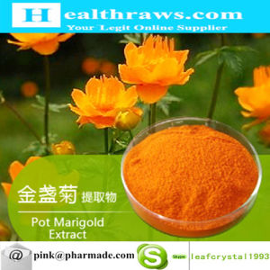 Pot Marigold Extract Raw Powder Large Powder Provided pictures & photos