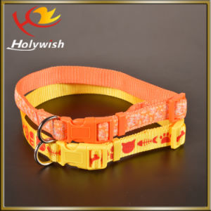Heat Sublimation New Design Nylon Pet Dog Collars pictures & photos
