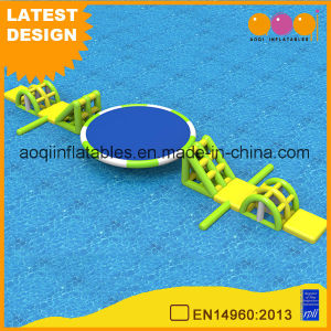 Round Swing Water Game Beach Inflatable Water Sport Game for Summer (AQ01789) pictures & photos