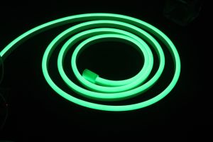 High Brightness SMD RGB Waterproof Neon LED Tube Light Neon Flex pictures & photos