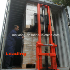 Container Loading Check/Container Loading Supervision for Big Packing pictures & photos