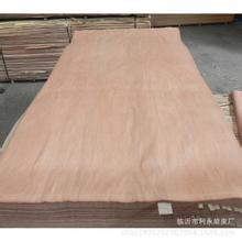 Natural Keruing Veneer in Very Good Quality pictures & photos
