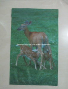 Plastic Pole Fabric Hanging Banner (SS-FH47) pictures & photos
