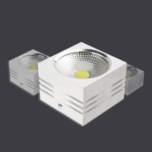 10W LED COB Downlight for Living Room in Door pictures & photos