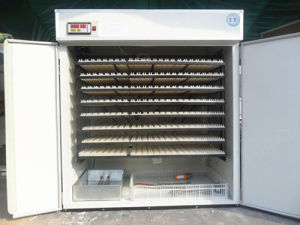 Hhd Hot Sale Chicken Egg Incubator for Sale Yzite-15 pictures & photos