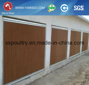 Long Life Galvanized H Type Rearing Chicken Cage pictures & photos