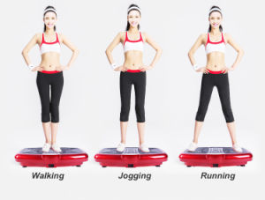 OEM/ODM Fitness Body Shaper Vibration Plate Machine pictures & photos
