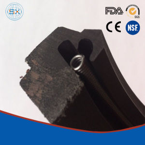 Hydraulic Rubber Rotary Shaft R35 R37 Oil Seals pictures & photos