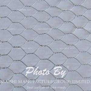 "1/2"" Galvanized Chicken Hexagonal Wire for Africa pictures & photos"