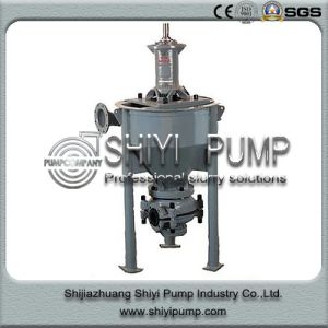 Vertical Sand Mineral Handling Froth Pump pictures & photos
