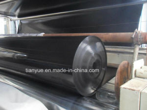 High Quality Geomembrane HDPE Geotechnical Membrane pictures & photos