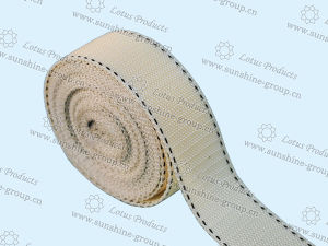 High Quality PP Webbing PP Belt pictures & photos