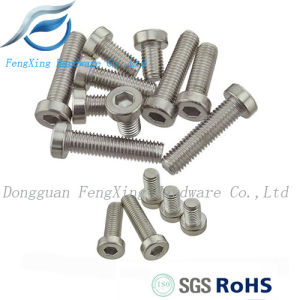 Stainless Steel Hexagon Socket Thin Head Cap Screw DIN7984