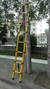 Telescopic Ladder Fiberglass of 2m 3m 4m pictures & photos