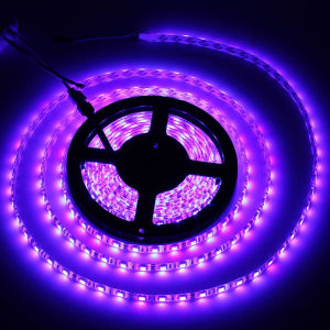 5050 RGB Flexible LED Strip Lighting pictures & photos